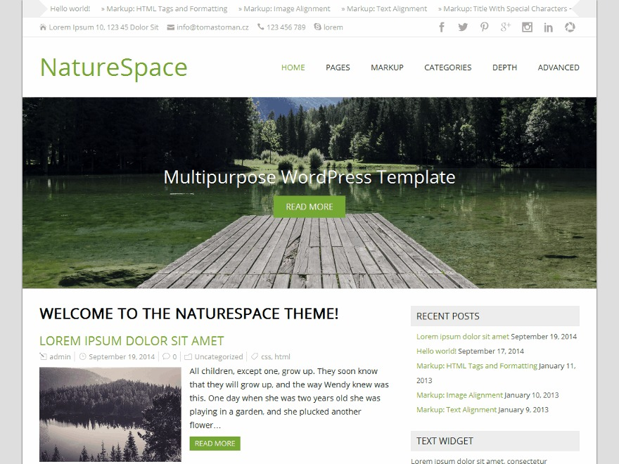 NatureSpace Premium WordPress ecommerce template