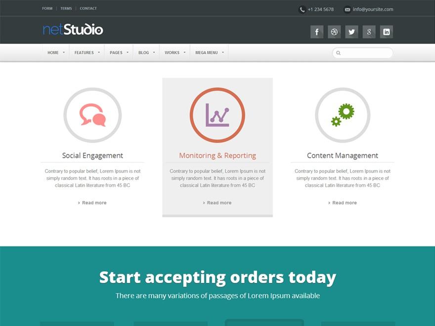 NetStudio business WordPress theme