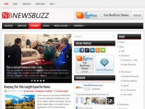 Newsbuzz free website theme