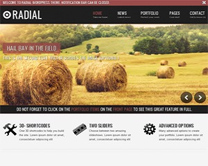 Radial WordPress blog template