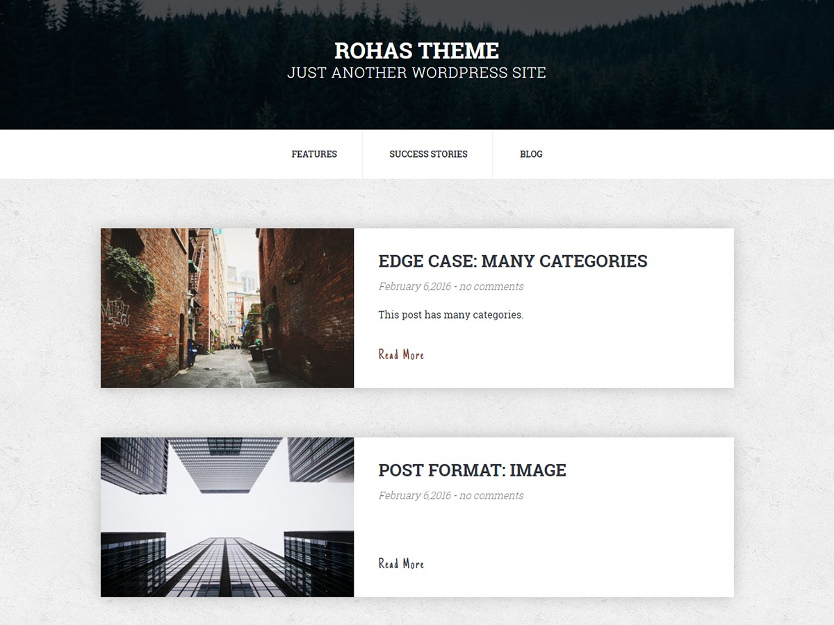 Rohas Lite WordPress template free download