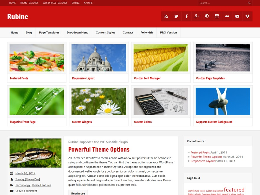 Rubine Lite WordPress template free