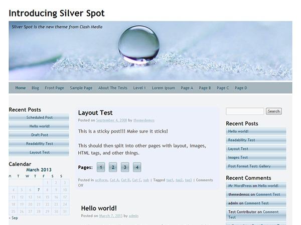 Silver Spot WordPress theme