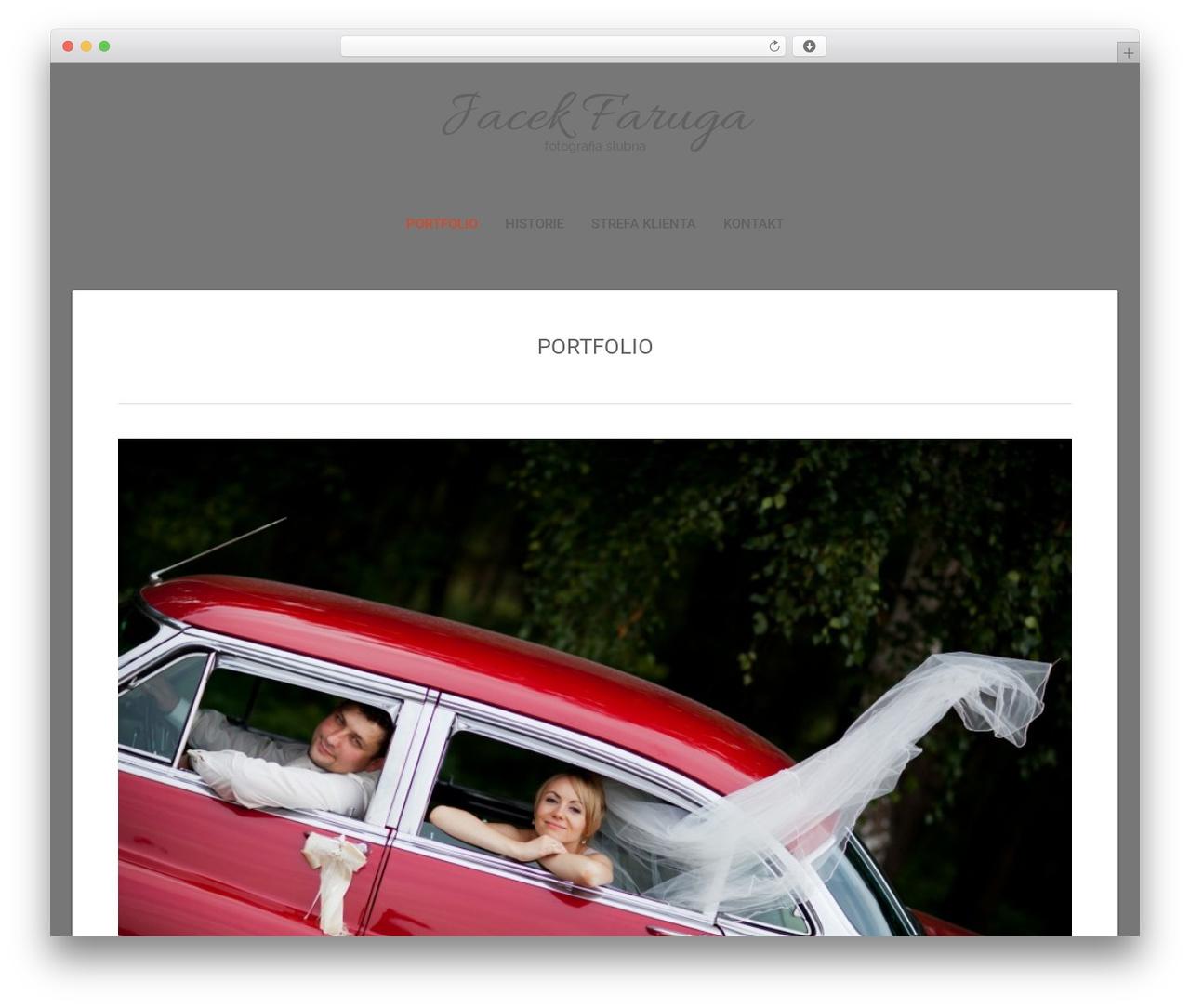 SuevaFree WordPress template free - faruga.pl