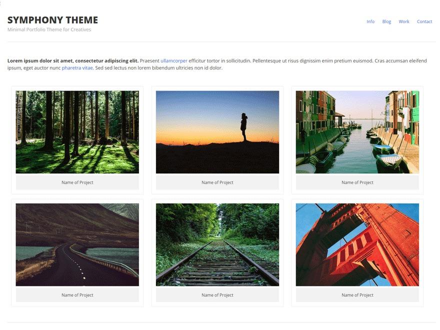 Symphony WordPress ecommerce template