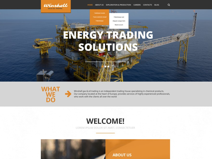 Theme WordPress theme52707
