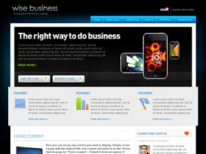 WiseBusiness WordPress template for business