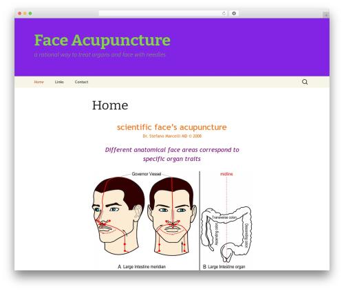 WordPress theme FA 20-13 Child Theme - face.ago.it