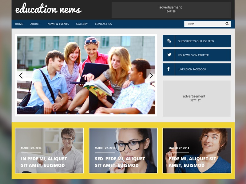 WordPress theme theme48709