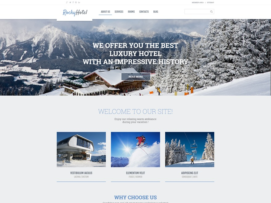WordPress theme theme54792