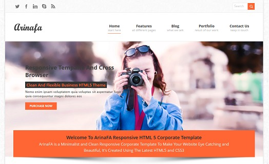 WordPress website template Arinafa