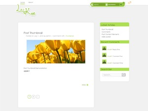 WordPress website template LuKoo