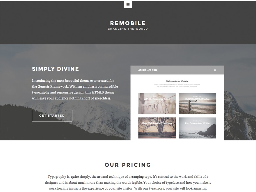 WordPress website template Remobile Pro Theme