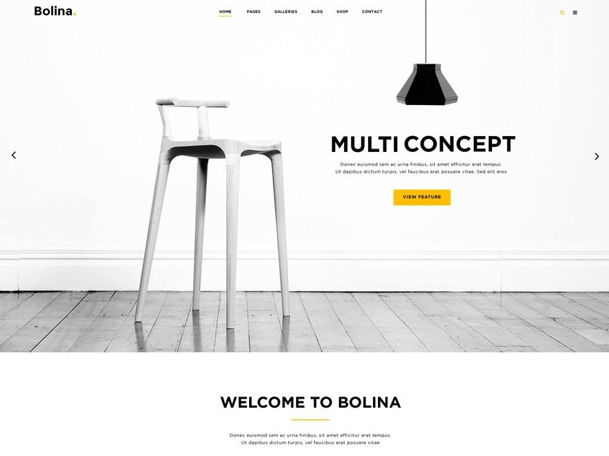 WP Bolina WordPress theme design