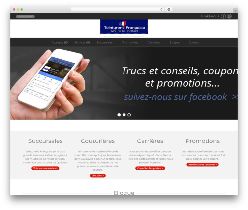 Do.Biz WordPress theme - teinturerie-francaise.net