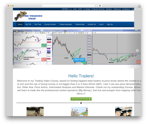 Free WordPress ExtraWatch PRO (Live Stats, Heatmap, Click tracking, Download Monitor and more) plugin - thetradingtrap.com