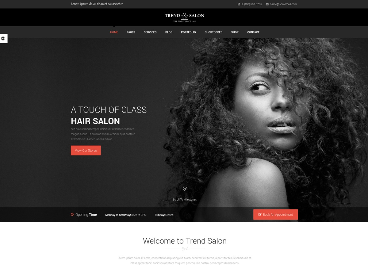 Theme WordPress TrendSalon