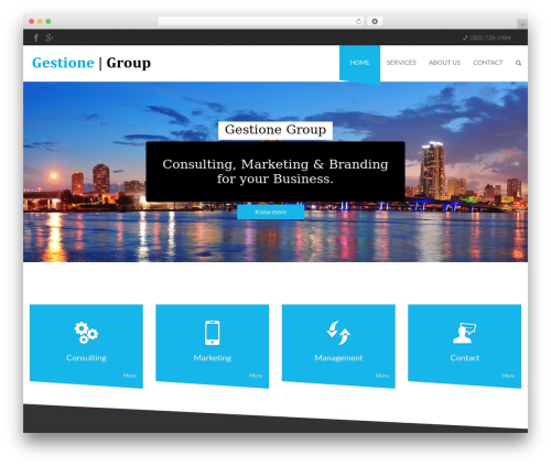 Desirable WordPress template for business - gestionegroup.com