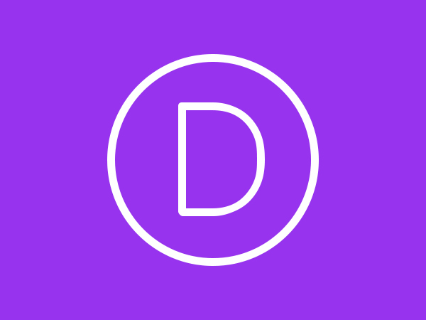Divi Child WordPress theme