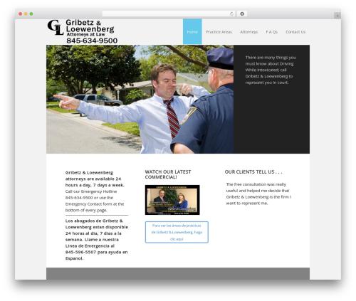 WordPress template Executive Child Theme - gribetzloewenberg.com