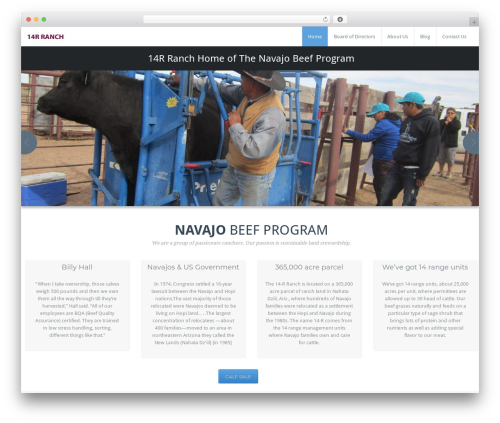 Template WordPress BusiProf Pro - 14rranch.org