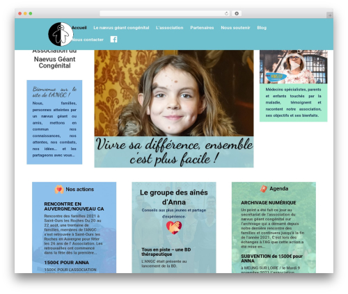 Divi WordPress theme - naevus.fr