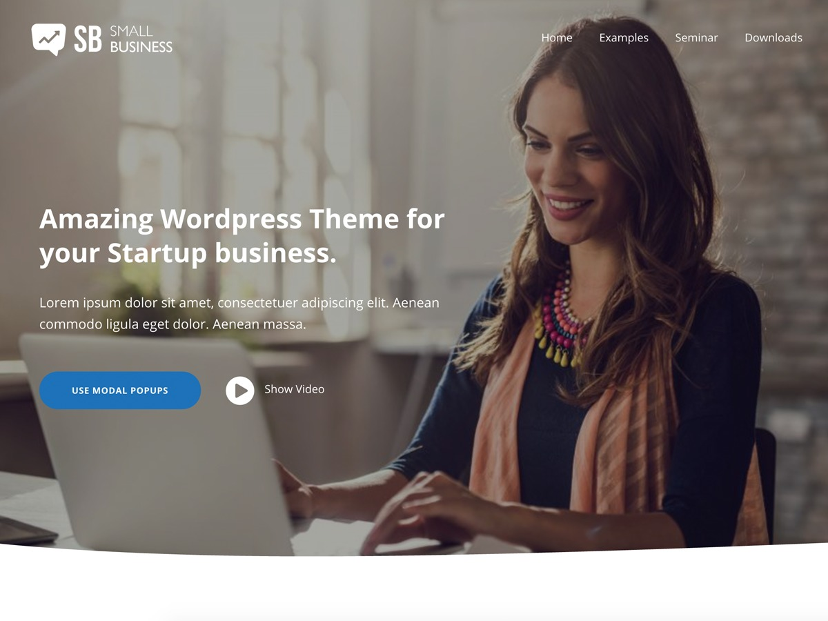 SmallBusiness CD company WordPress theme