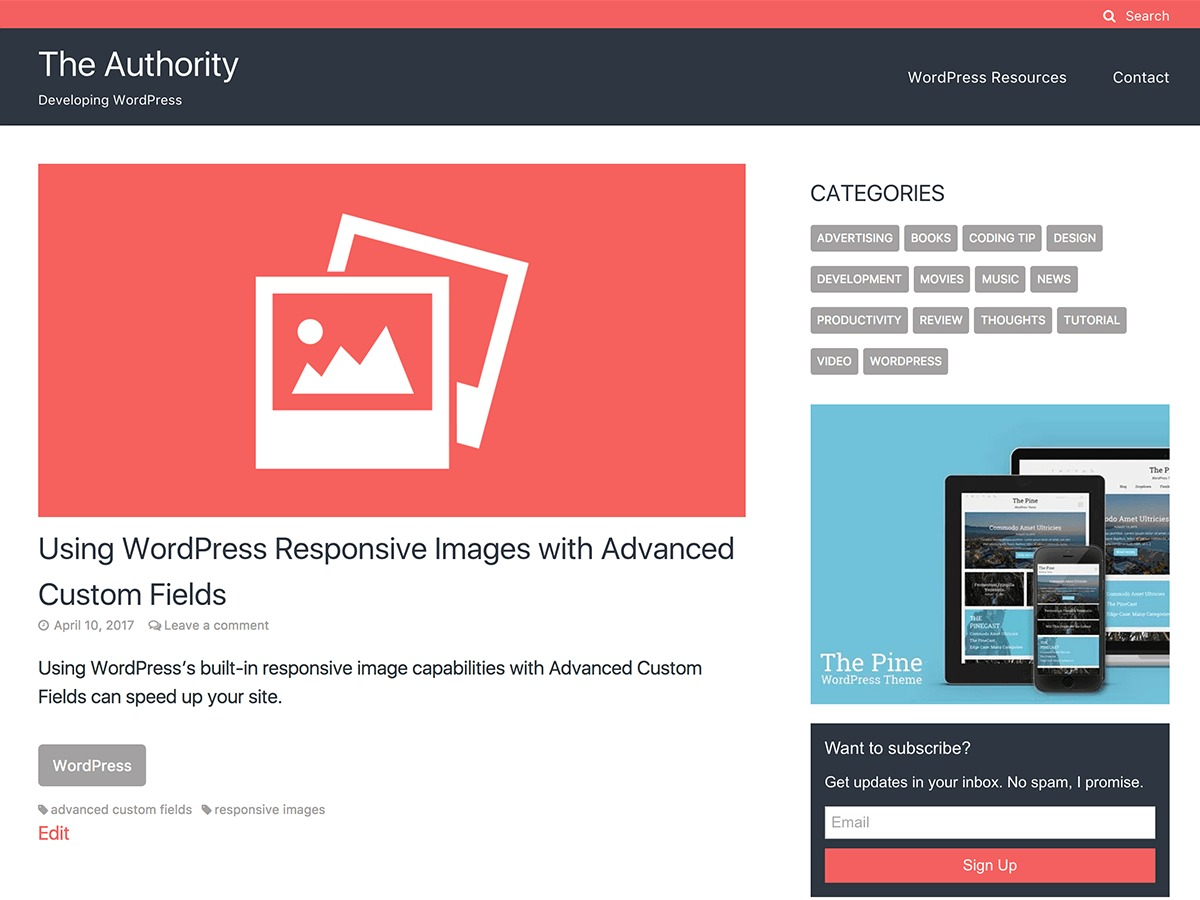 The Authority WordPress theme download