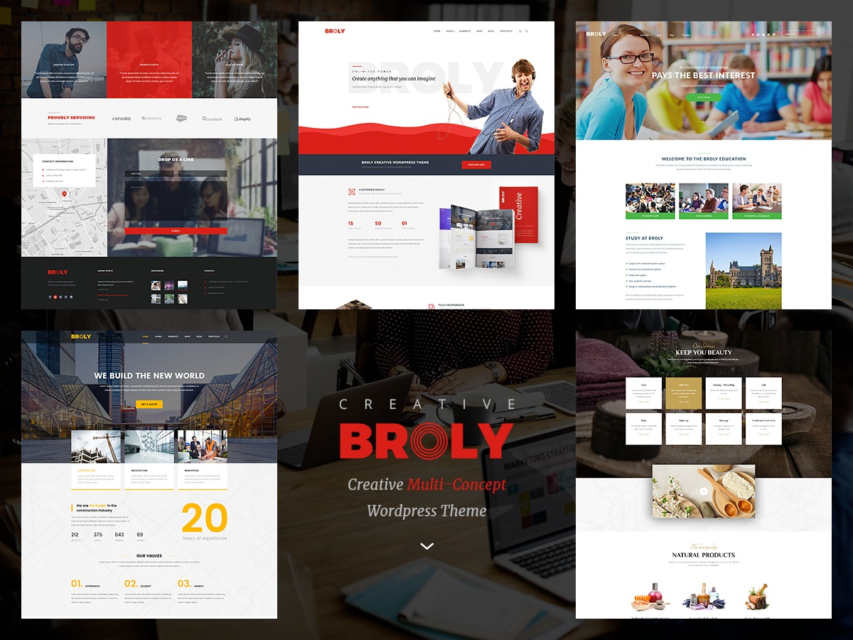 WordPress theme Broly