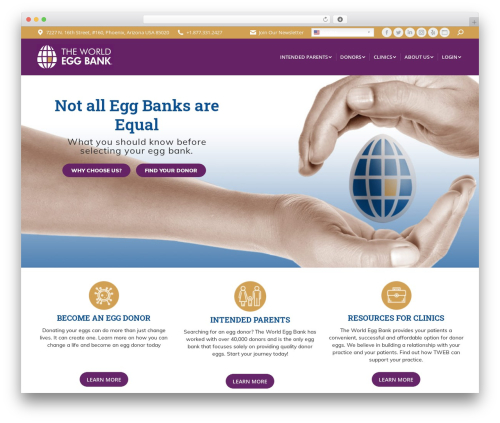 WordPress theme The7 - theworldeggbank.com