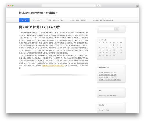 Silver Blue template WordPress - bindi-irwin.com