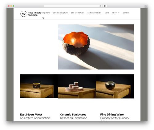Divi WordPress page template - milesmooreceramics.com