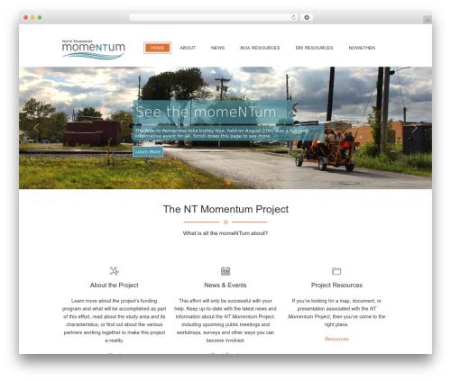 Jewel Business WordPress WordPress theme - ntmomentum.com