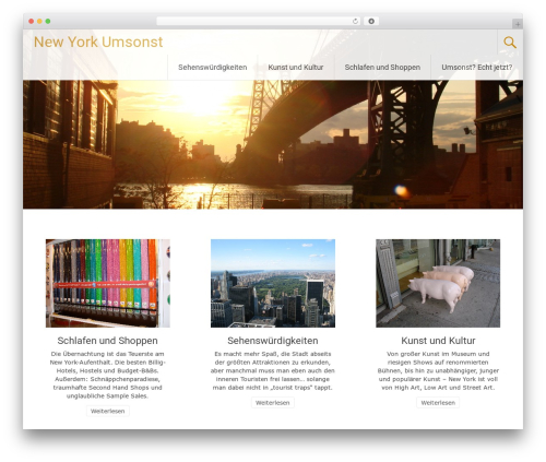 Radiate WordPress theme download - newyorkumsonst.com