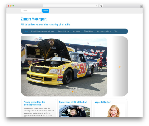 IAMSocial best WordPress template - zamoramotorsport.com