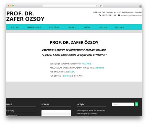 Firmness company WordPress theme - zaferozsoy.com