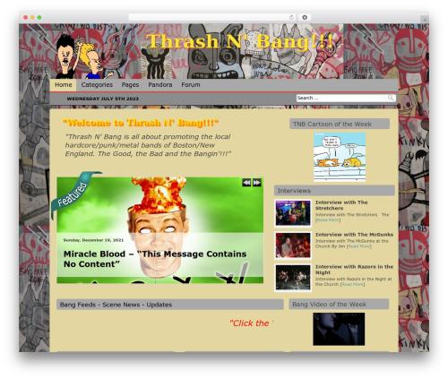 Antisnews WordPress theme - thrashnbang.com