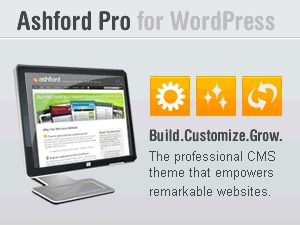 Ashford Pro best WordPress template