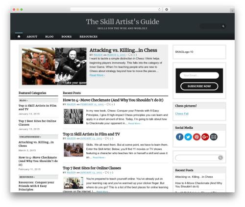 Best WordPress template Opti - theskillartistsguide2.com