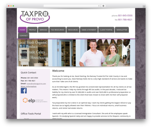 Customized WordPress theme - taxproprovo.com