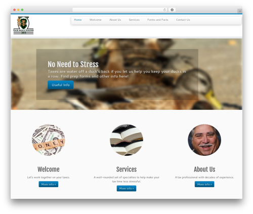 Customizr best free WordPress theme - taxsolutions365.com/roy