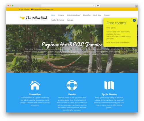 WordPress theme Divi - theyellowbird.com