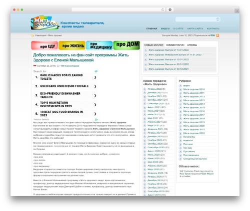 statement free WP theme - zdorovo-1tv.ru