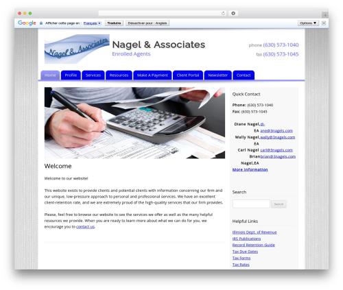 Customized company WordPress theme - 3nagels.com