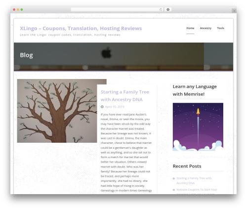 WordPress theme Drizzle Business - xlingo.com