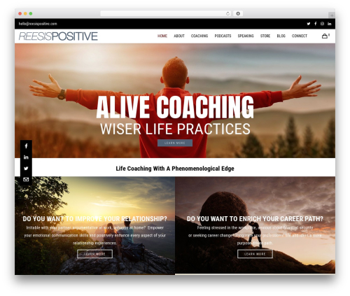 Best WordPress theme Blade - reesispositive.com