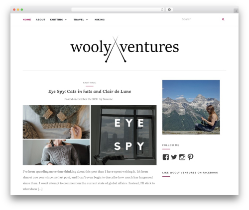 Activello best free WordPress theme - woolyventures.com