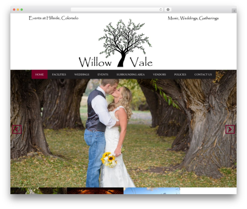 Grill template WordPress - willowvaleevents.com