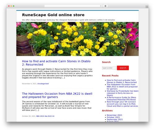 Clean Word best WordPress theme - findprog.com