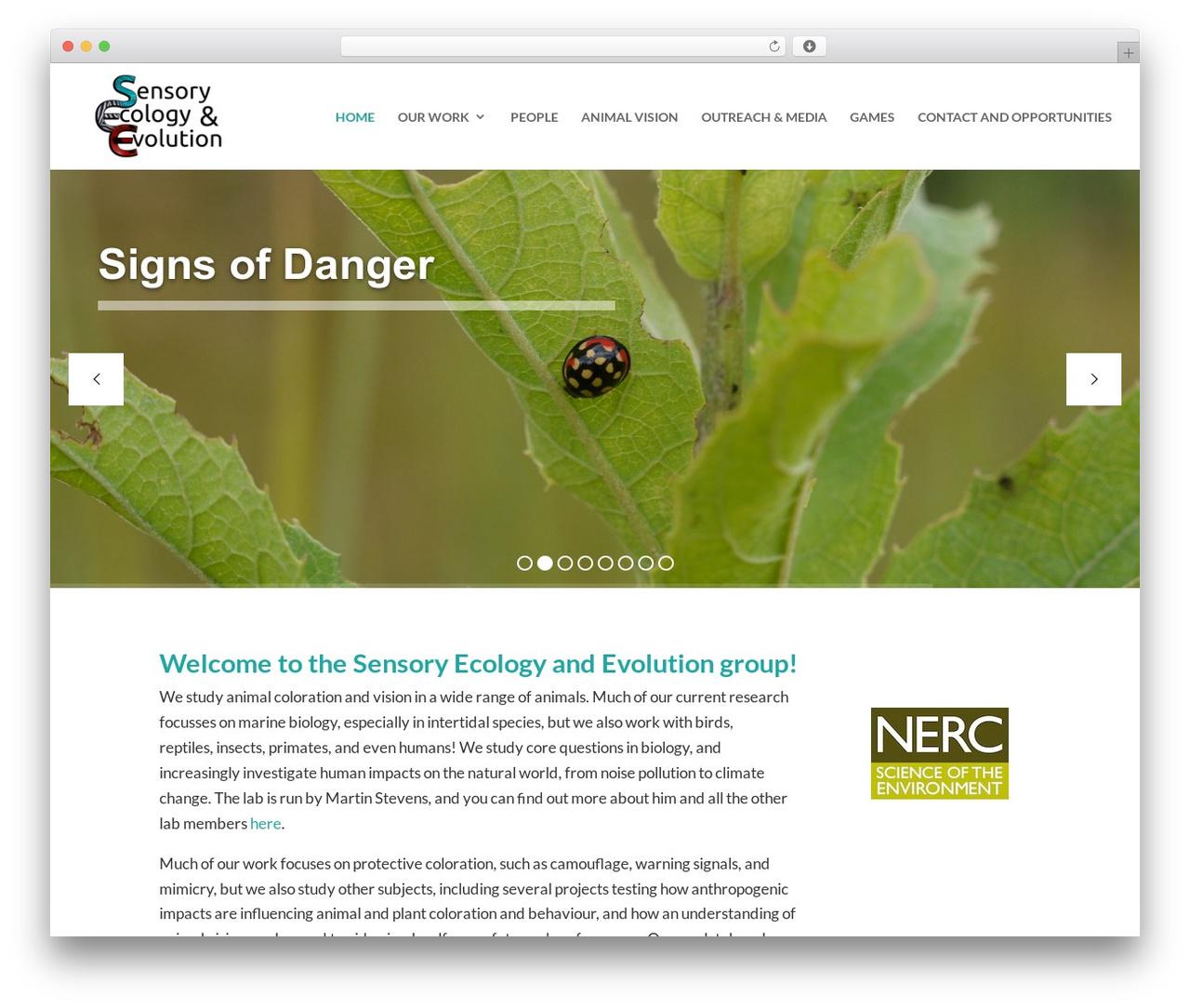 Divi top WordPress theme - sensoryecology.com